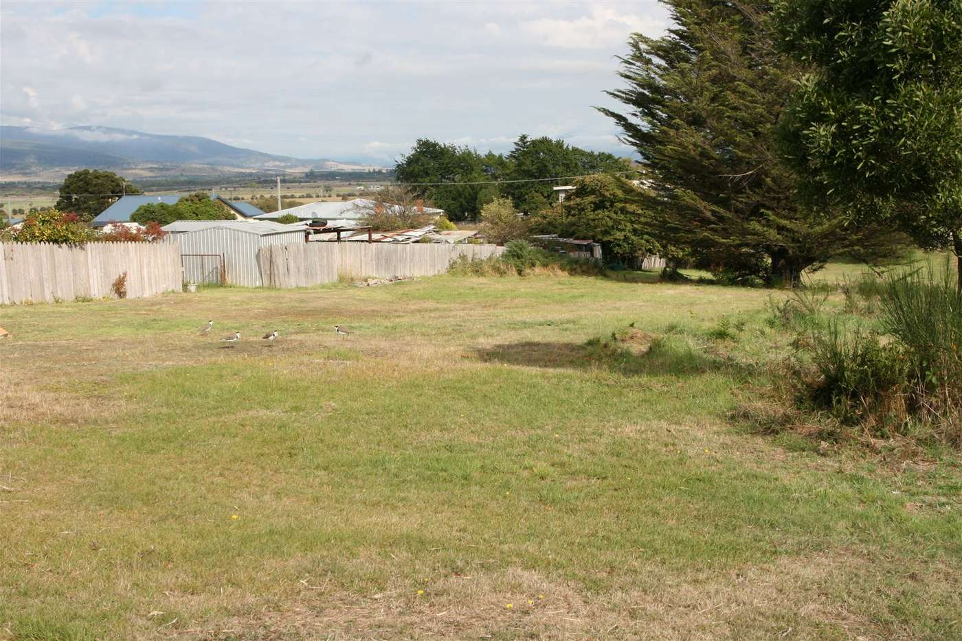 Main view of Homely residentialLand listing, 2 Clive Street, St Marys TAS 7215