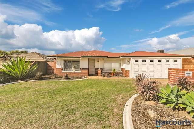 44 Viridian Drive, Banksia Grove WA 6031