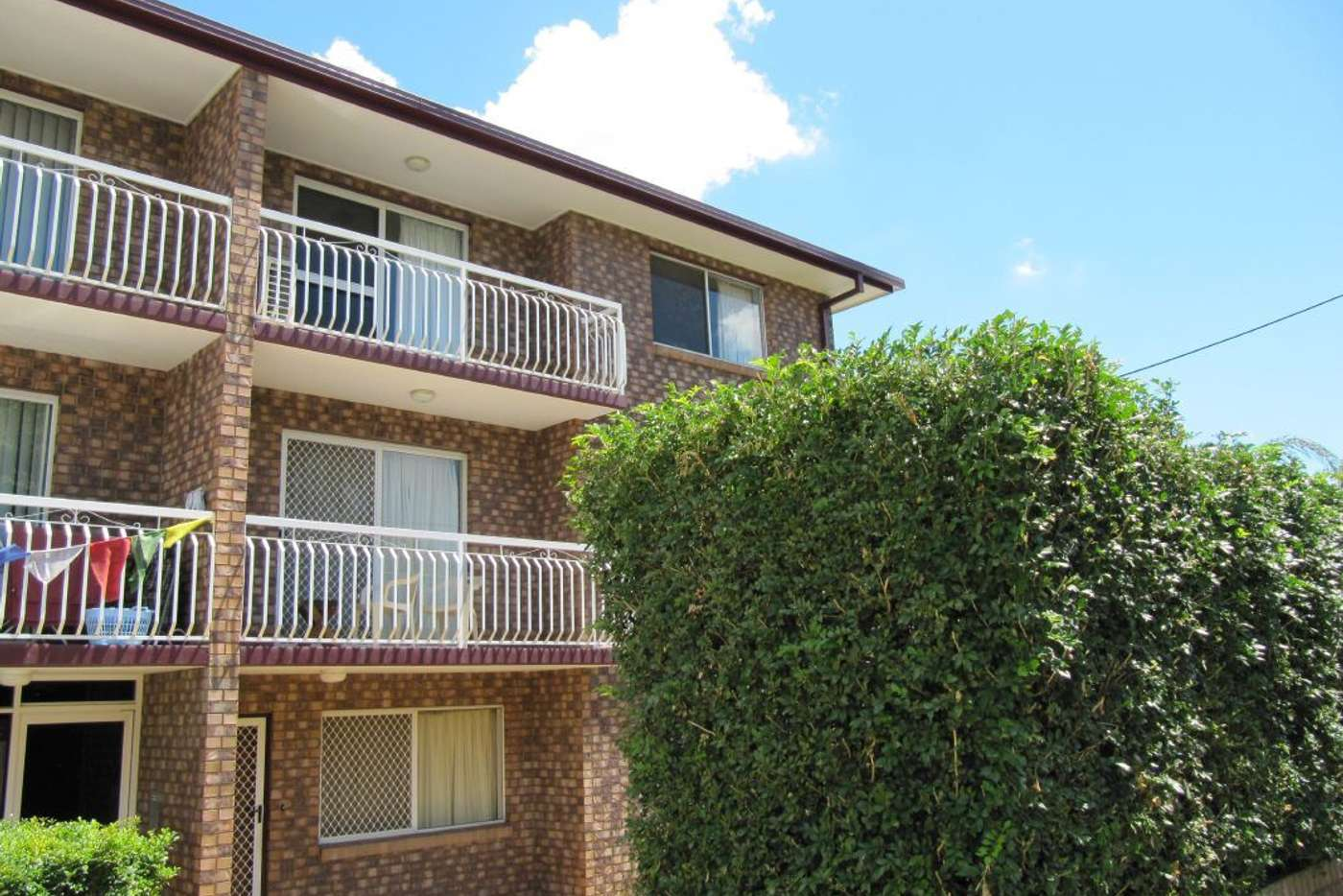 Seventh view of Homely unit listing, 8/51 Adamson Street, Wooloowin QLD 4030