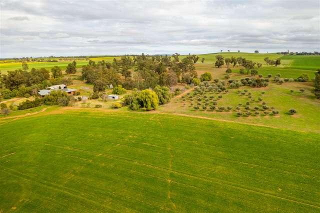697 Tooyal Road, The Gap via, Wagga Wagga NSW 2650