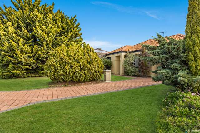 54 Paddington Avenue, Currambine WA 6028