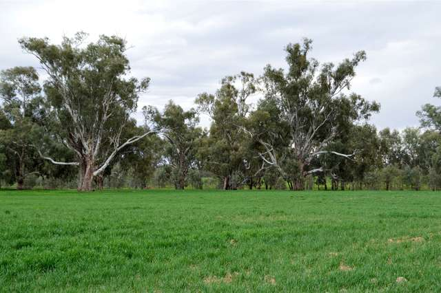 3931 Old Narrandera Road, Currawarna via, Wagga Wagga NSW 2650