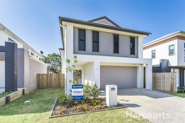 53 Paterson Street, North Lakes QLD 4509