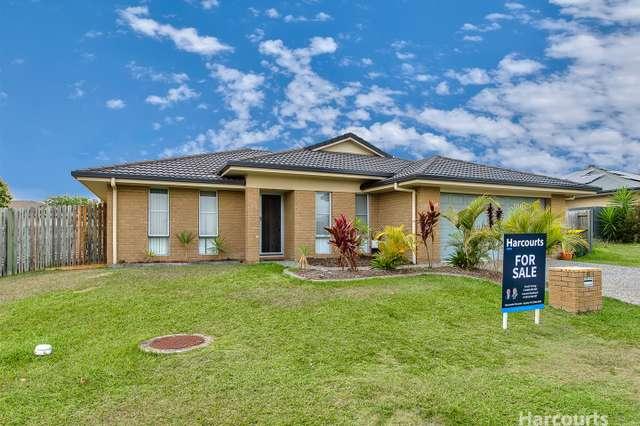 15 Lacebark Street, Morayfield QLD 4506