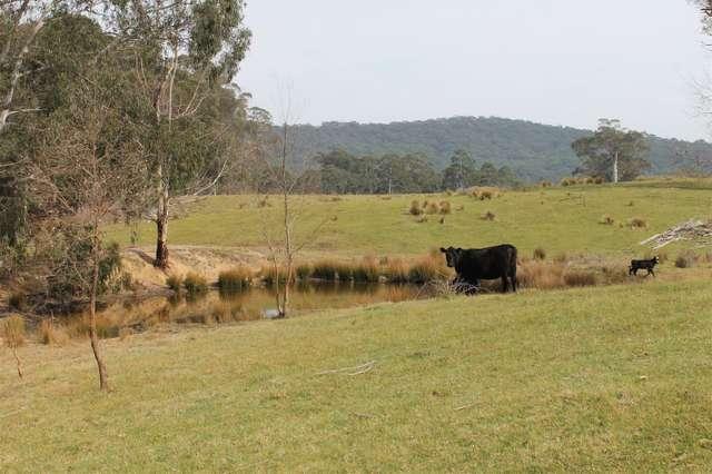 4336 Kings Highway, Braidwood NSW 2622