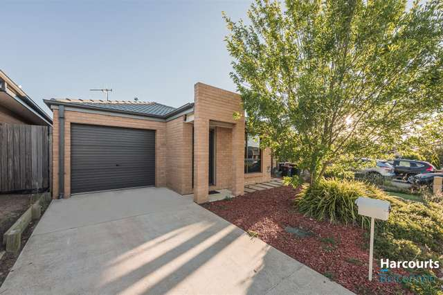 14 Sisely Street, Macgregor ACT 2615