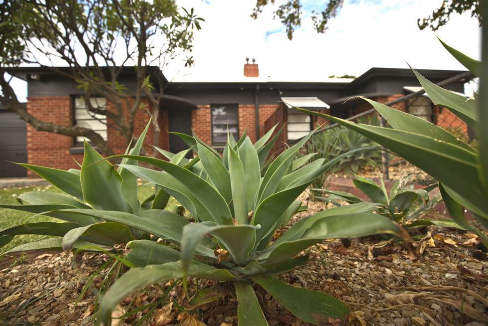 Second view of Homely house listing, 33 Spring Street, Beverley SA 5009