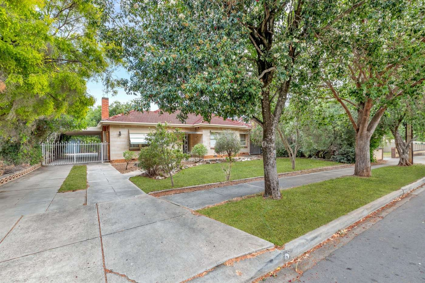 Main view of Homely house listing, 5 Gilding Avenue, Royston Park SA 5070