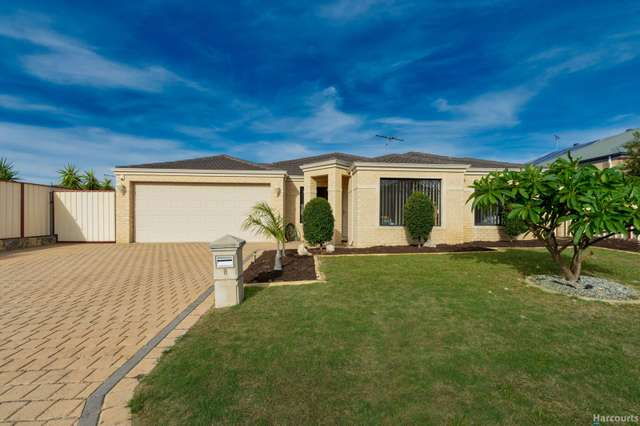 8 Soho Lane, Currambine WA 6028