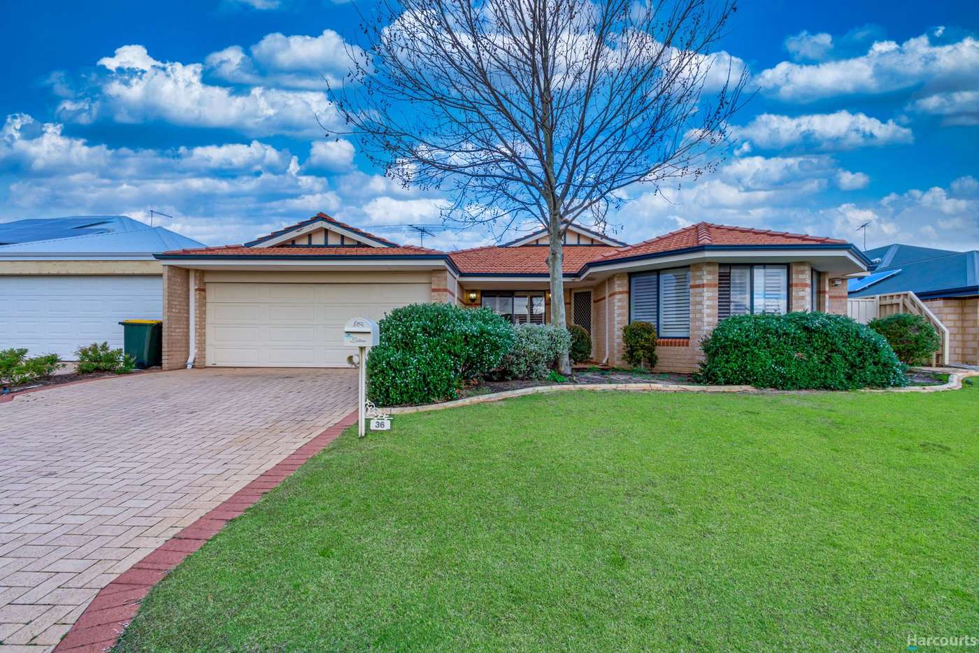 Main view of Homely house listing, 36 Stormbird Loop, Currambine WA 6028