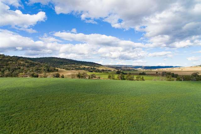 2624 Ridgelands Rd, 'Shannandore', Scone NSW 2337