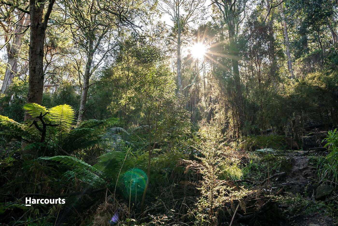 Sixth view of Homely house listing, 90 Harwoods Road, Geeveston TAS 7116