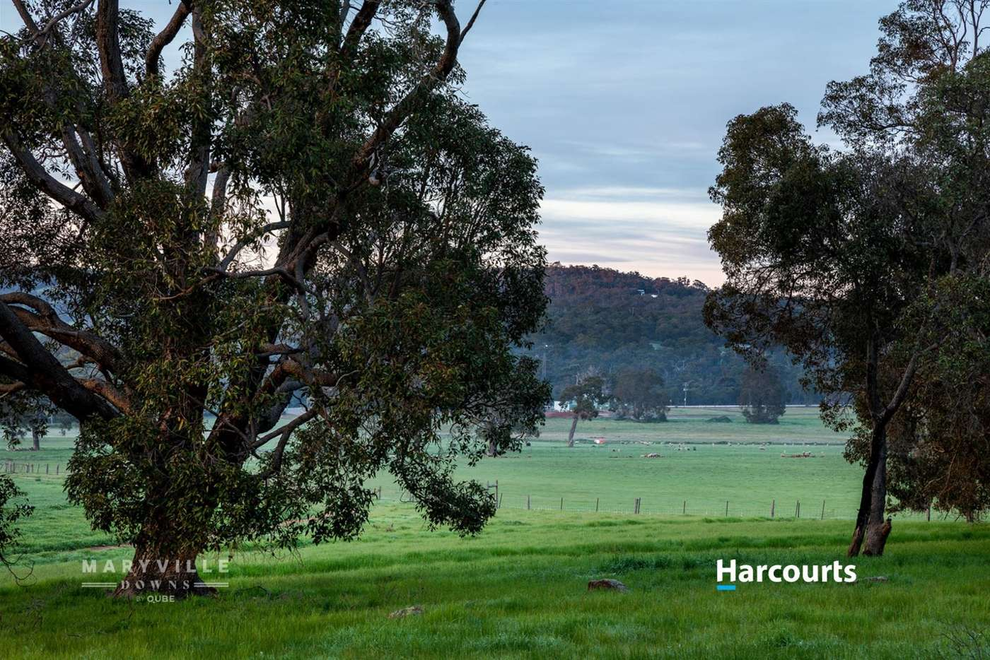 Main view of Homely residentialLand listing, Lot 2 Maine- Anjou Drive, Lower Chittering WA 6084