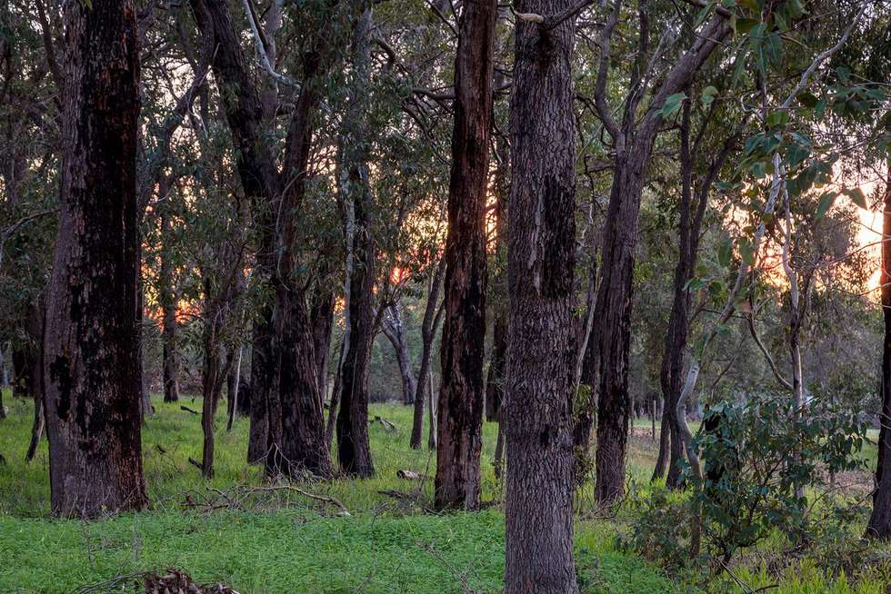 Third view of Homely residentialLand listing, Lot 2 Maine- Anjou Drive, Lower Chittering WA 6084