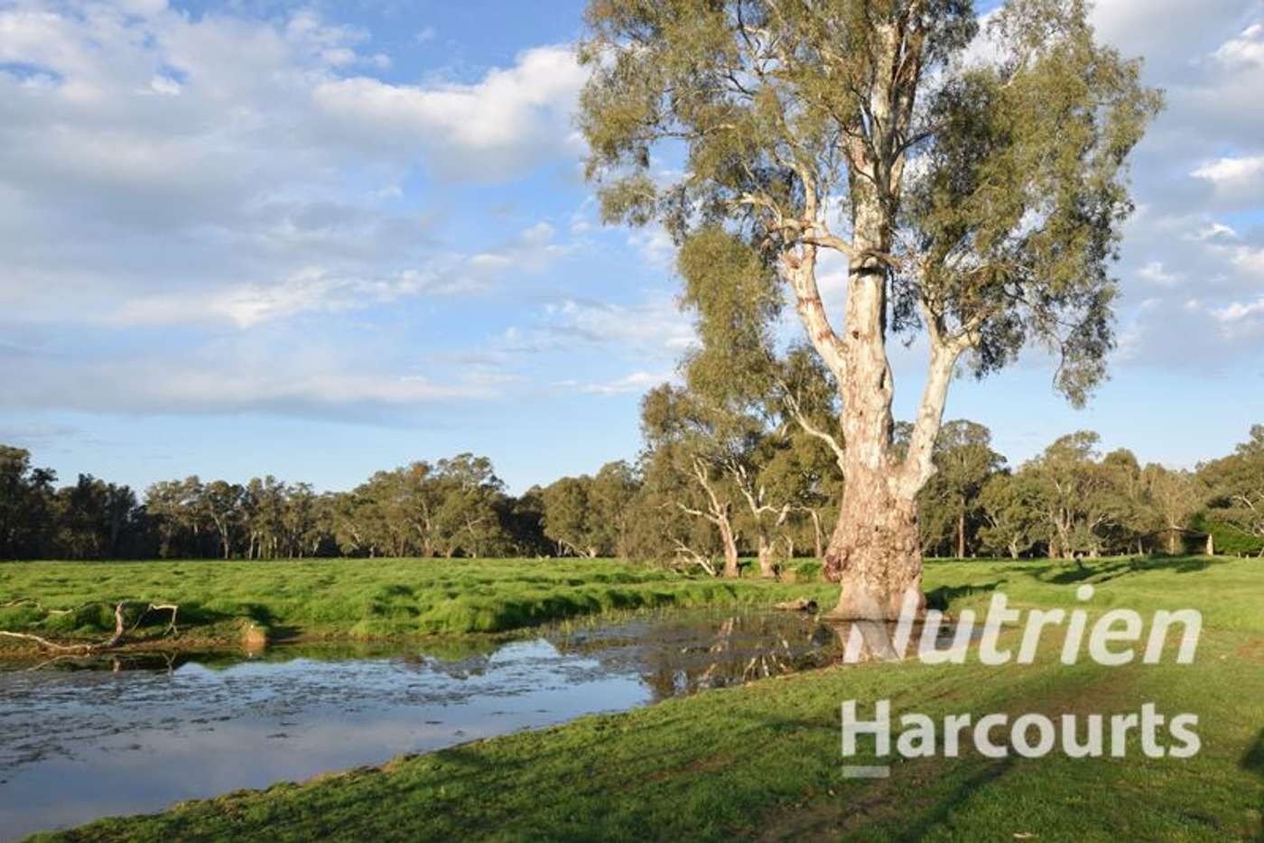 Main view of Homely ruralOther listing, Lot 3/Lot 3 113 Wilson Road, Wangaratta VIC 3677