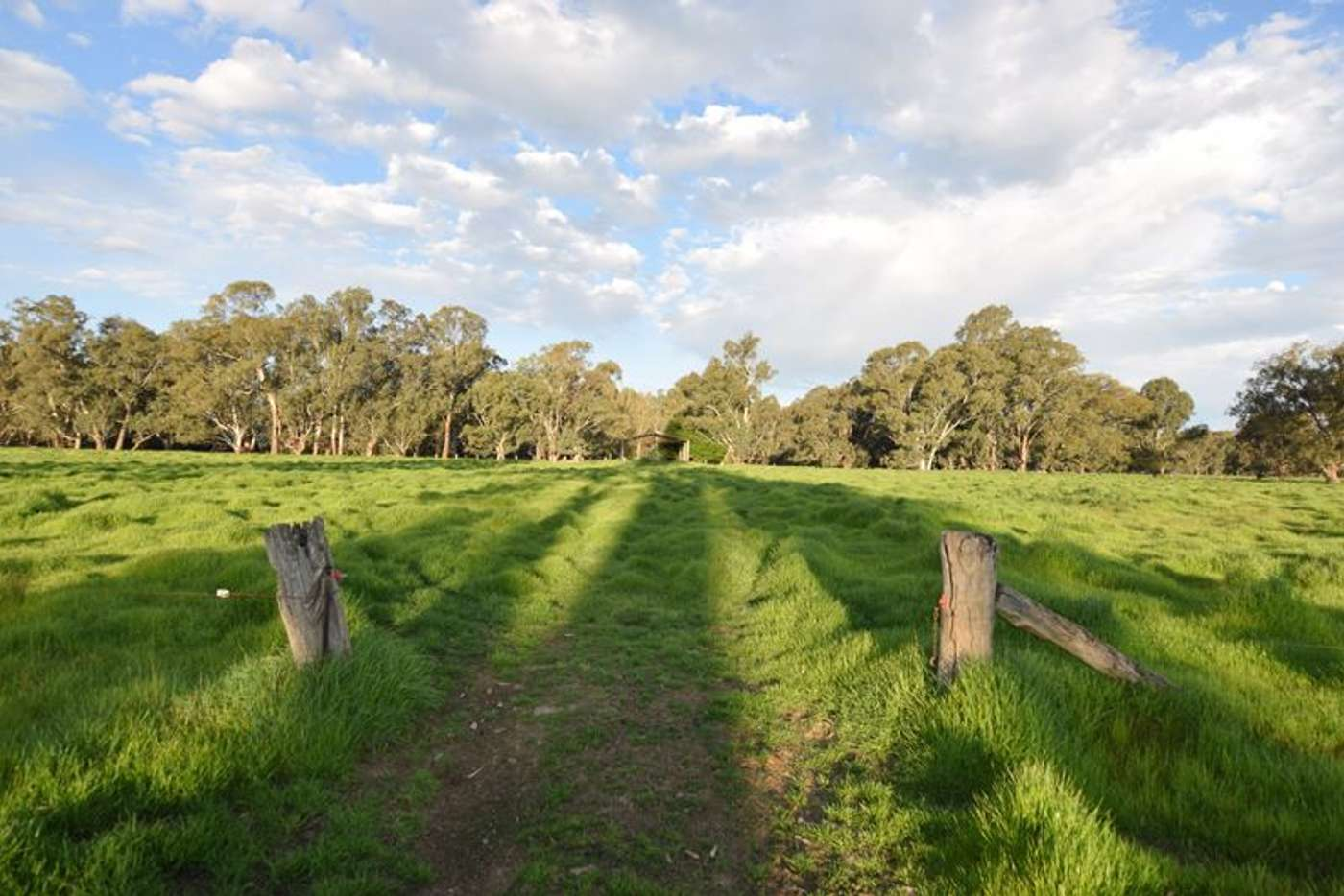 Seventh view of Homely ruralOther listing, Lot 3/Lot 3 113 Wilson Road, Wangaratta VIC 3677