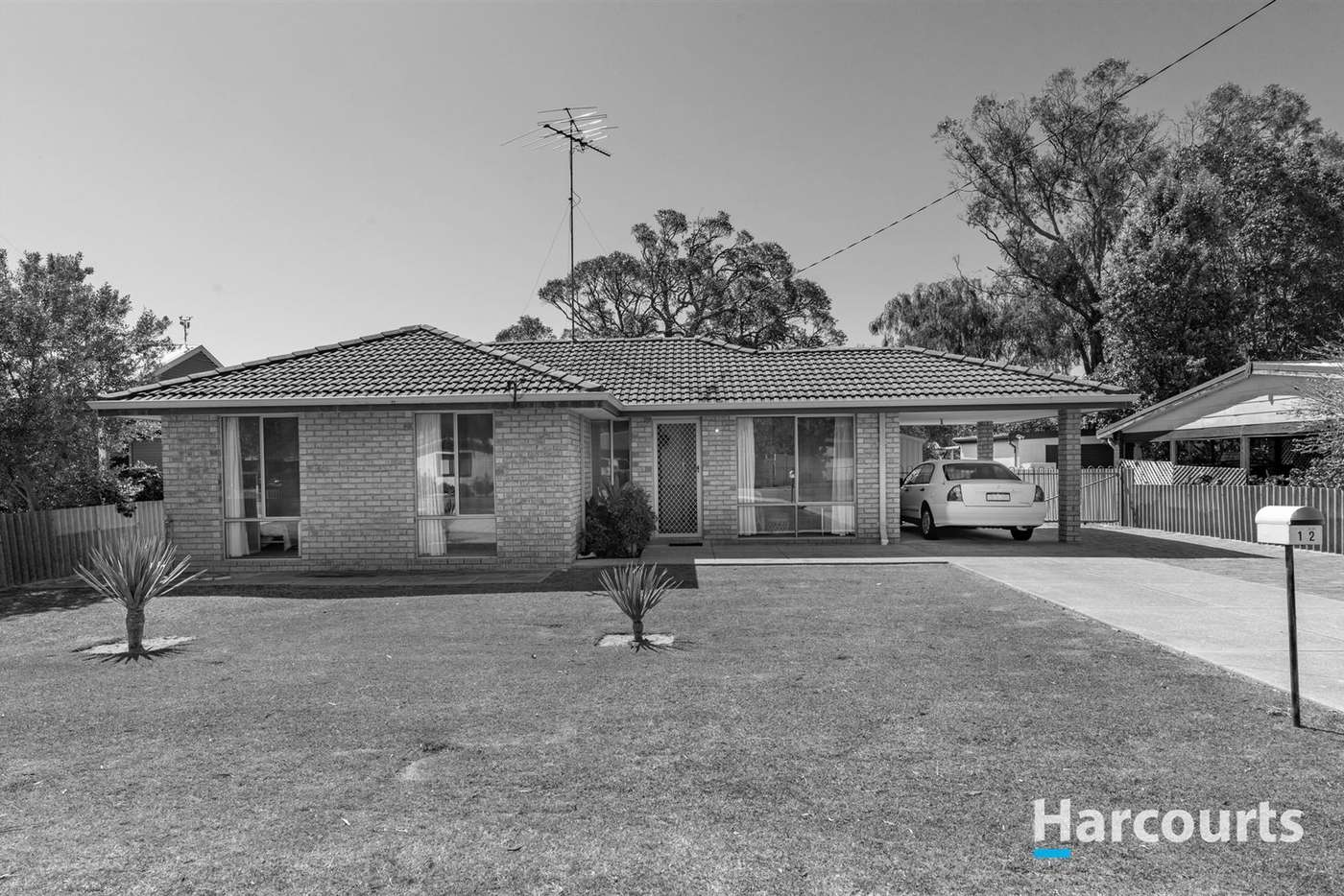 Main view of Homely house listing, 12 Nerine Street, Falcon WA 6210