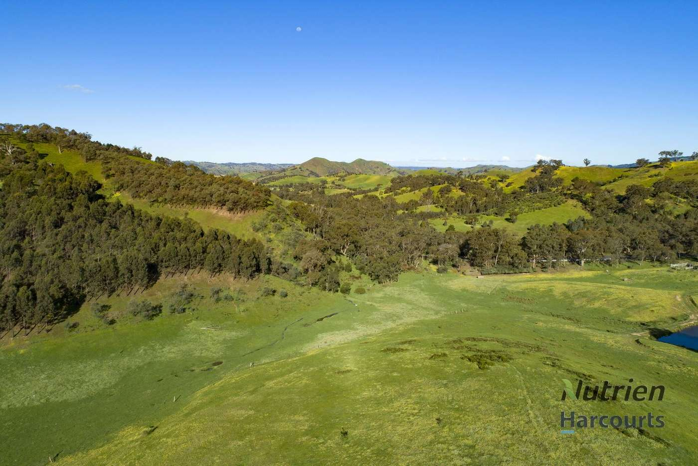 Main view of Homely ruralOther listing, 1409 Broadford-Flowerdale Road, Strath Creek VIC 3658