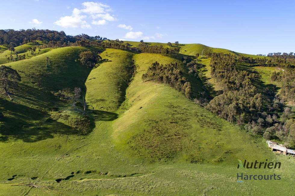 Fifth view of Homely ruralOther listing, 1409 Broadford-Flowerdale Road, Strath Creek VIC 3658