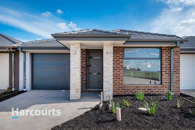 37 Australorp Drive, Clyde North VIC 3978