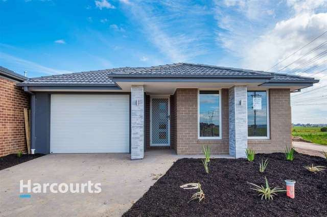 39 Australorp Drive, Clyde North VIC 3978