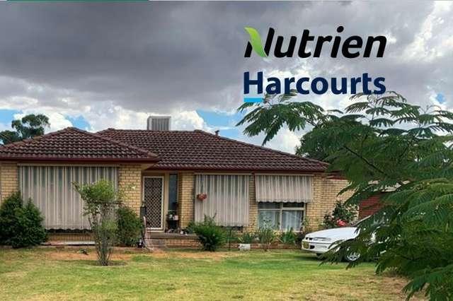 53 Cutler Avenue, Cootamundra NSW 2590