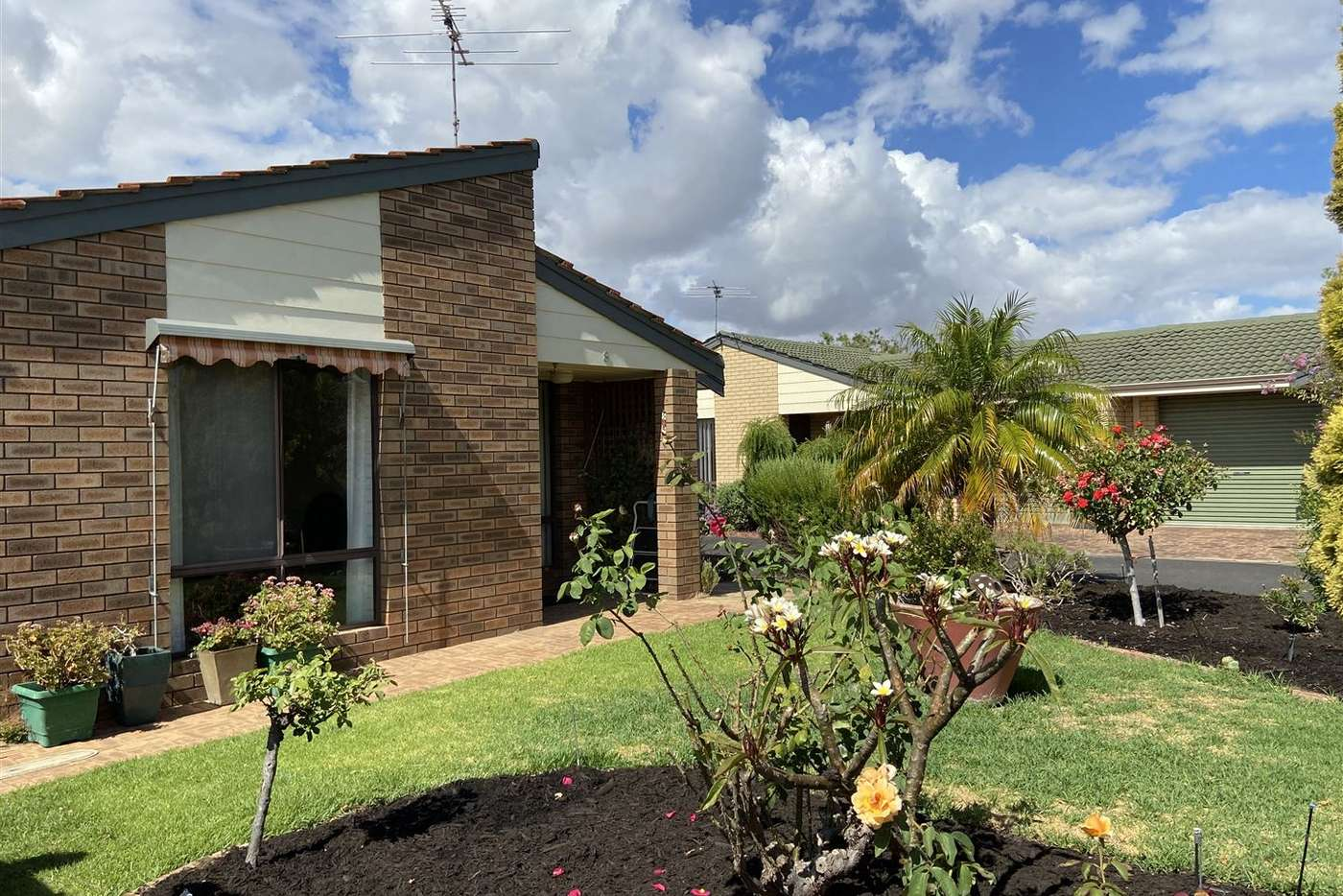 Main view of Homely unit listing, 8/54 West Street, Busselton WA 6280