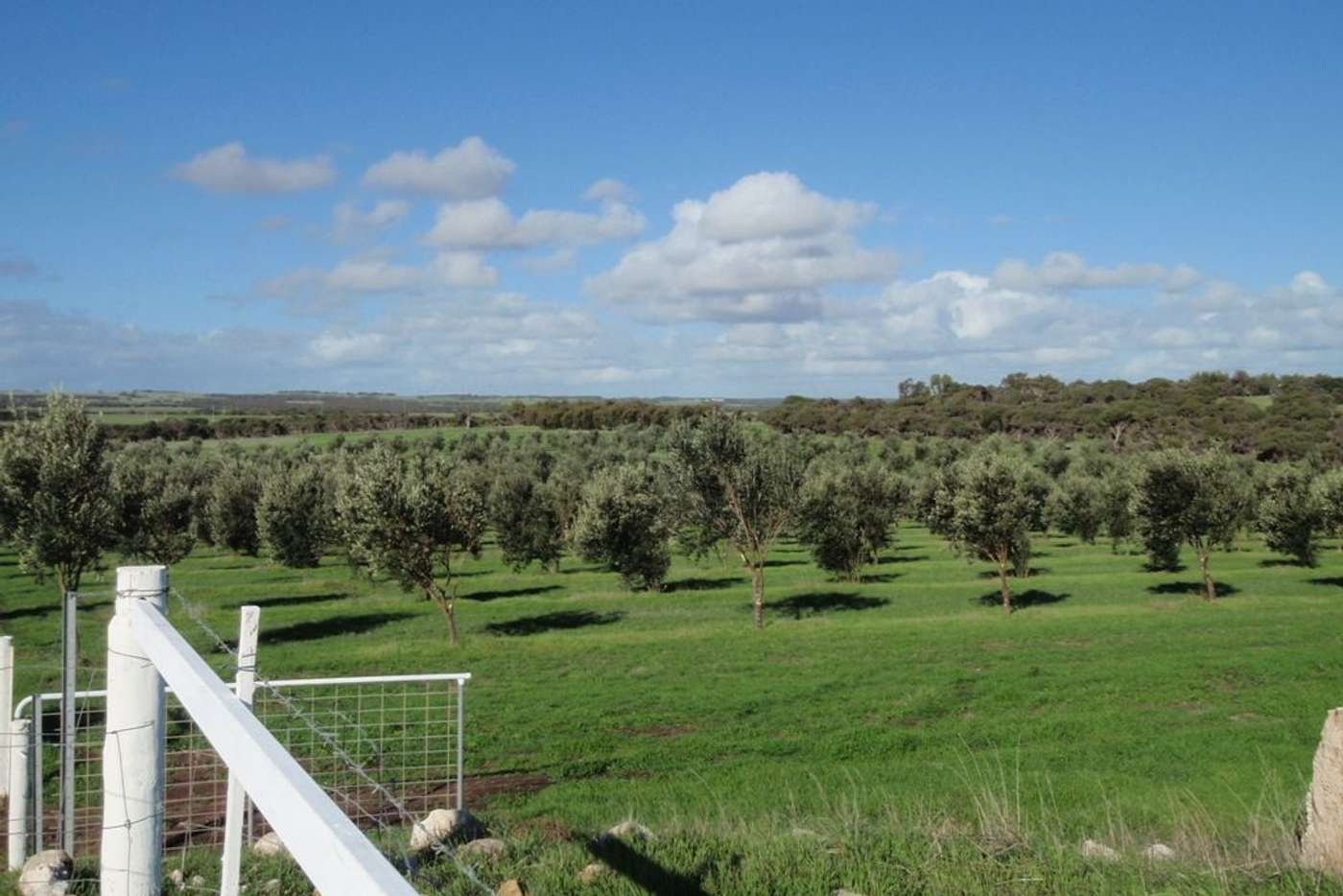 Main view of Homely ruralOther listing, Lot 28 Brand Highway, Bookara WA 6525