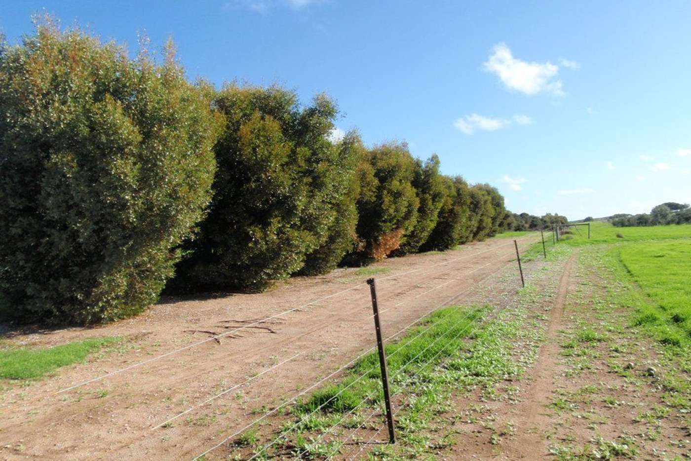 Sixth view of Homely ruralOther listing, Lot 28 Brand Highway, Bookara WA 6525