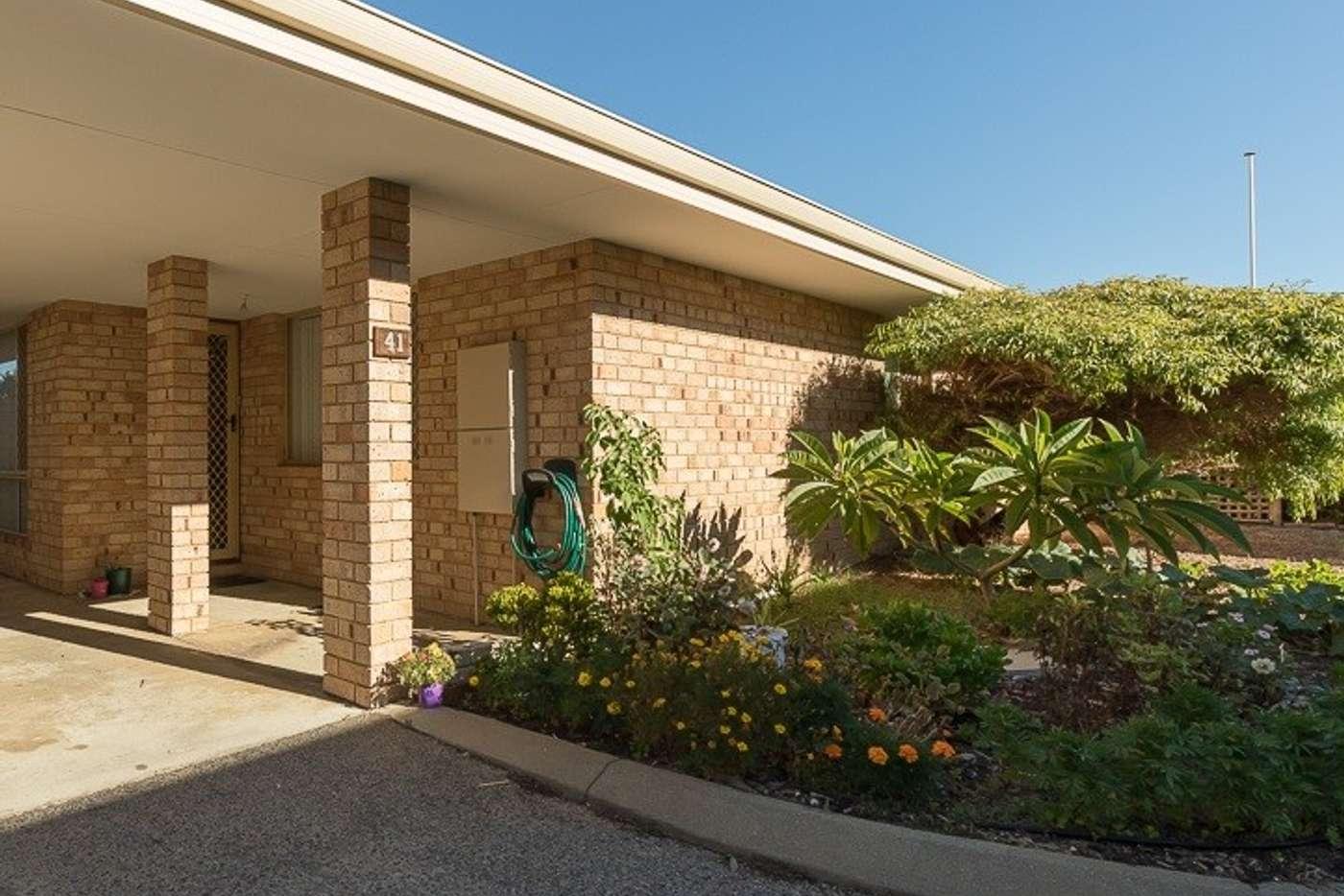 Main view of Homely villa listing, Unit 41/15-17 Ashford Avenue, Rockingham WA 6168