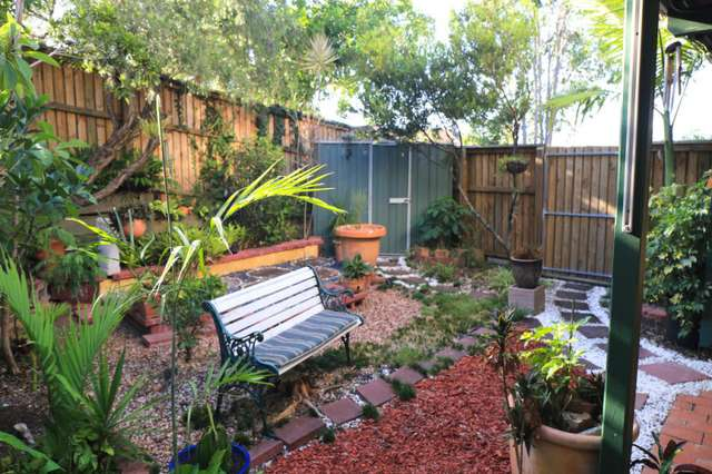 1/24 Wambool Street, Bulimba QLD 4171