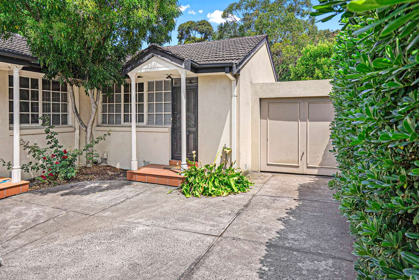 Main view of Homely unit listing, 5/4 Albion Road, Box Hill VIC 3128