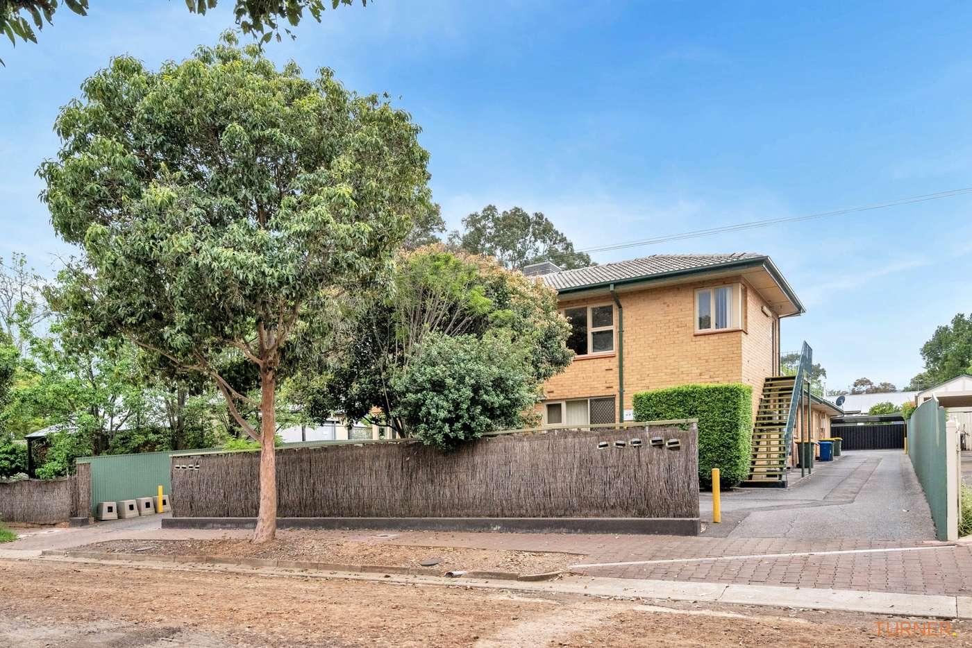 Main view of Homely unit listing, 3/3 Seaview Street, Fullarton SA 5063