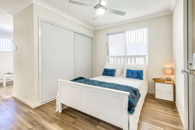 57 Nearra Street, Deagon QLD 4017