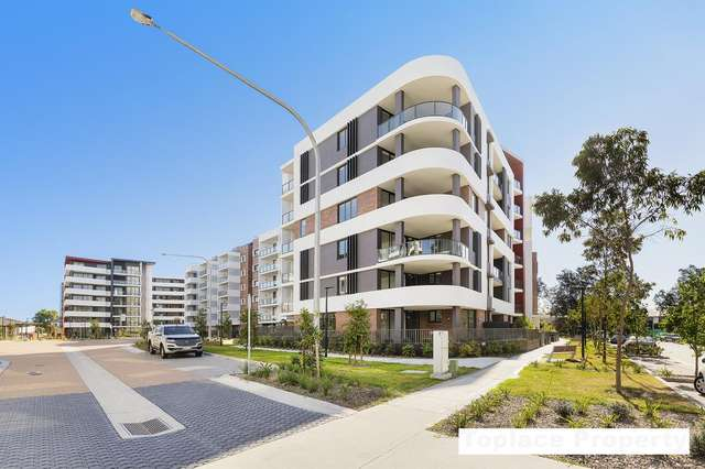 3 Bedrooms / 16-18 Pemberton Street, Botany NSW 2019