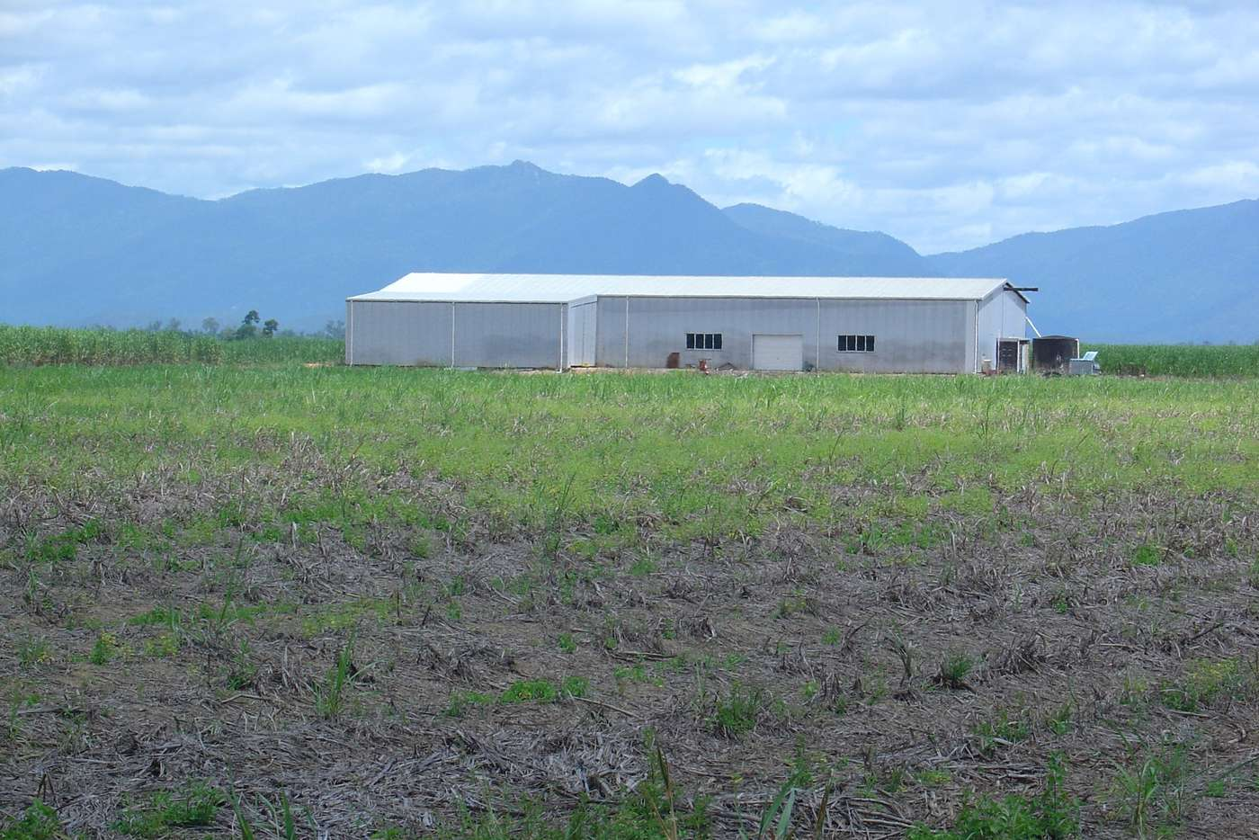 Main view of Homely residentialLand listing, 599 Davidson Road, Euramo QLD 4854