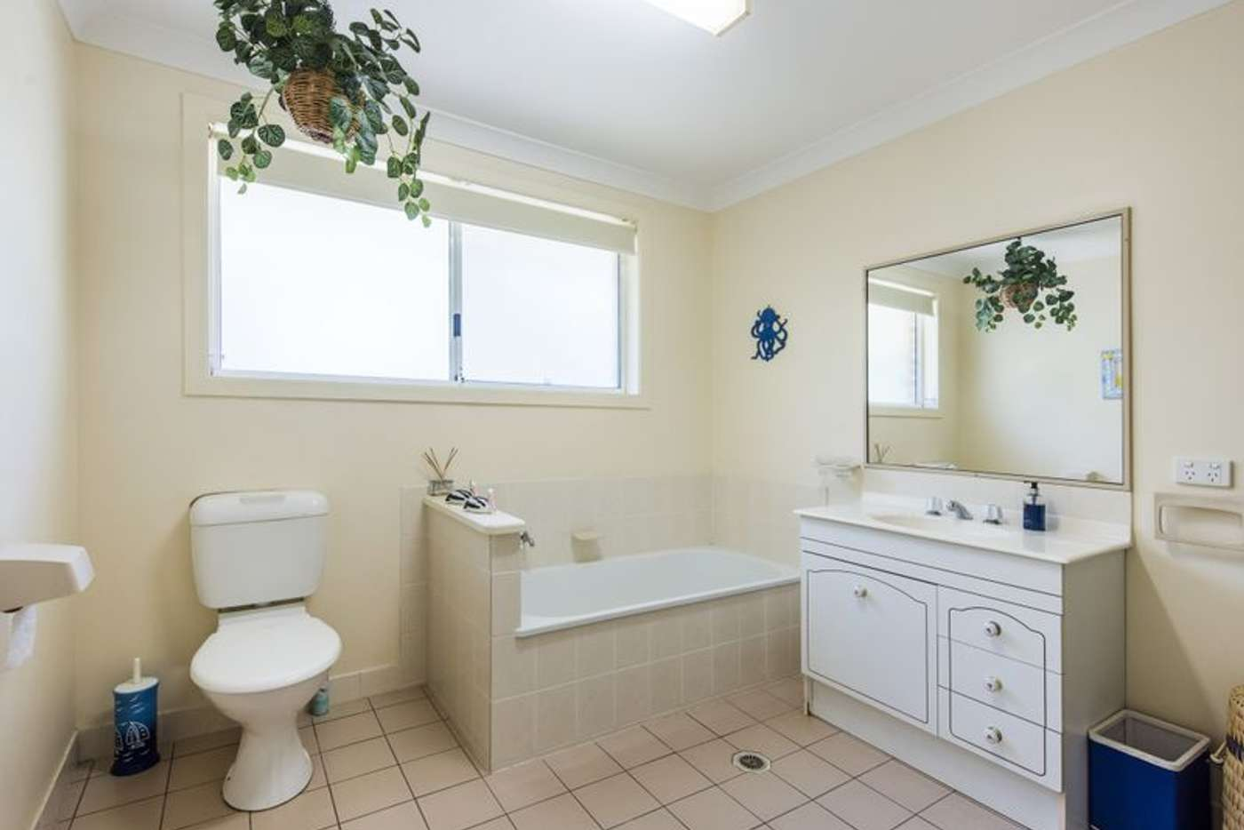 Seventh view of Homely unit listing, 5/98 Queen Street, Iluka NSW 2466
