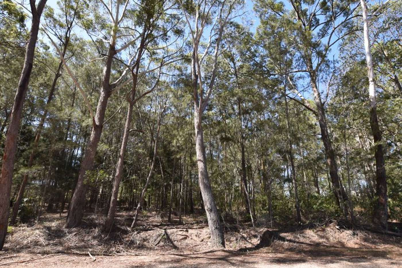 Main view of Homely residentialLand listing, 25 Dempsey, Russell Island QLD 4184