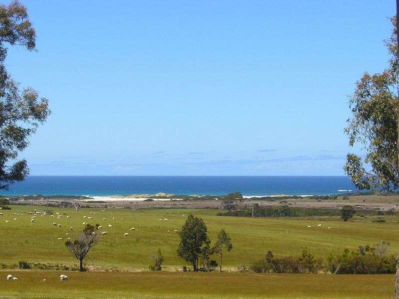 Main view of Homely  listing, 19595 Tasman Highway, Seymour, TAS 7215
