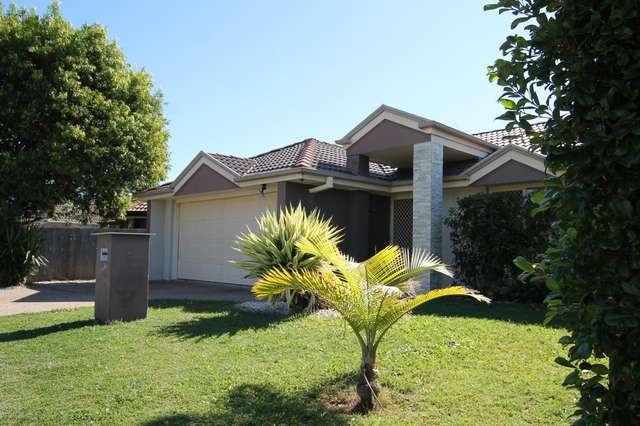 12 River Meadows Drive, Upper Coomera QLD 4209