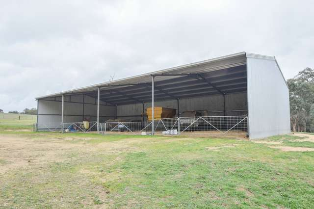 227 Bowlers Road, Young NSW 2594