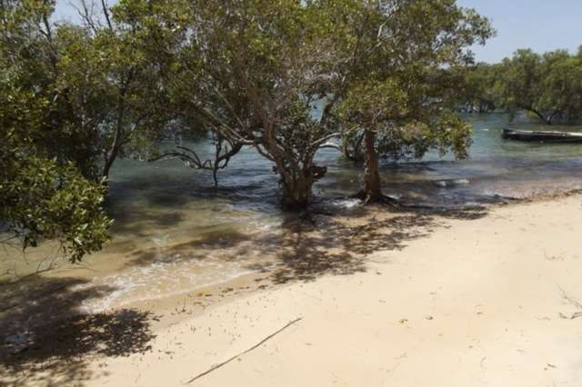 52 Attunga Street, Macleay Island QLD 4184