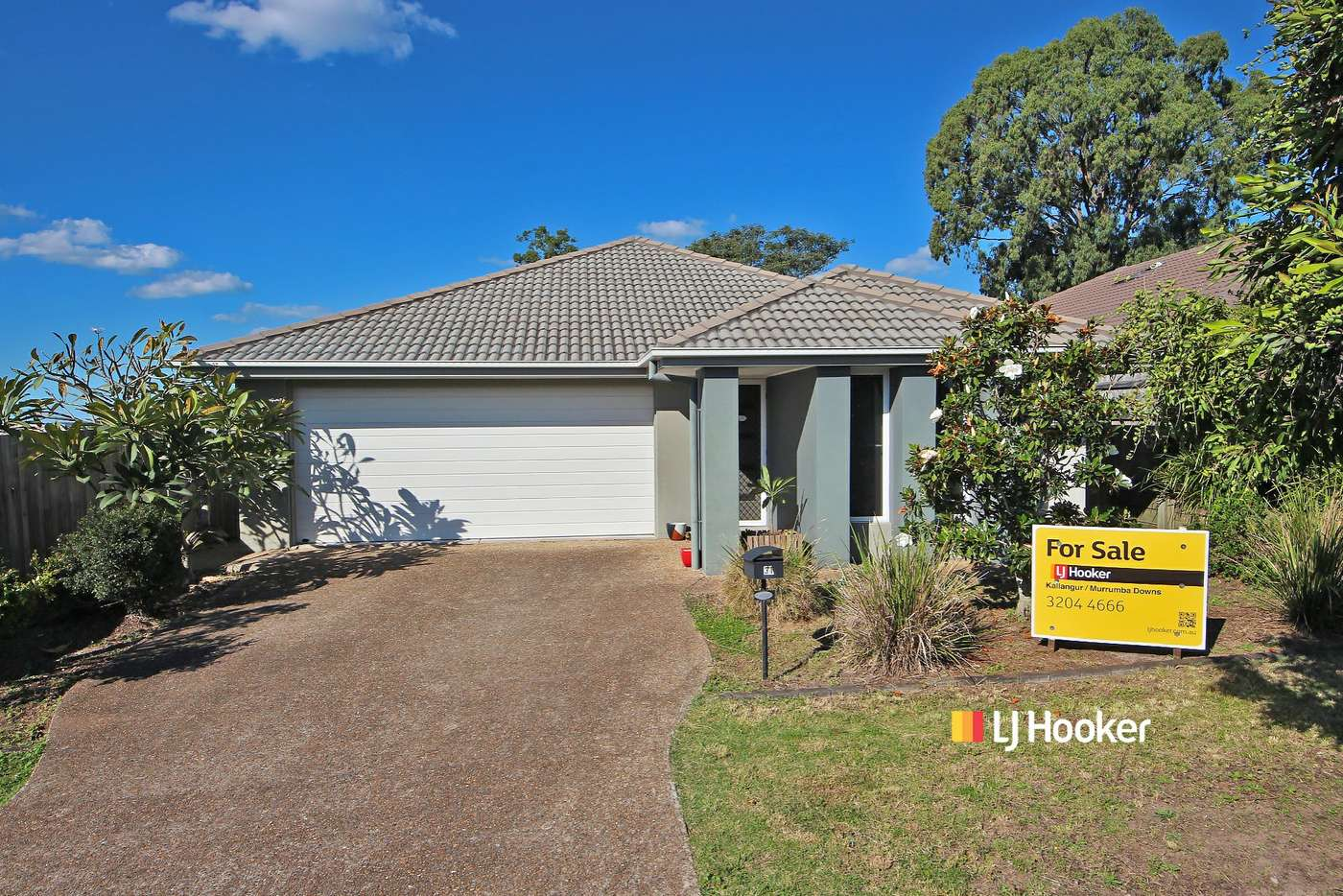 Main view of Homely house listing, 31 Chamomile Street, Griffin QLD 4503