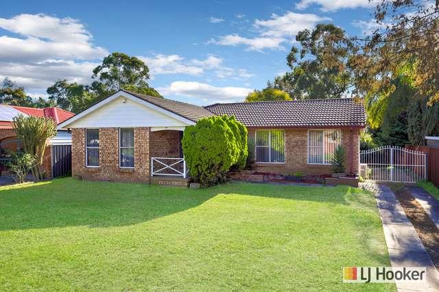 21 Lobelia Crescent, Quakers Hill NSW 2763