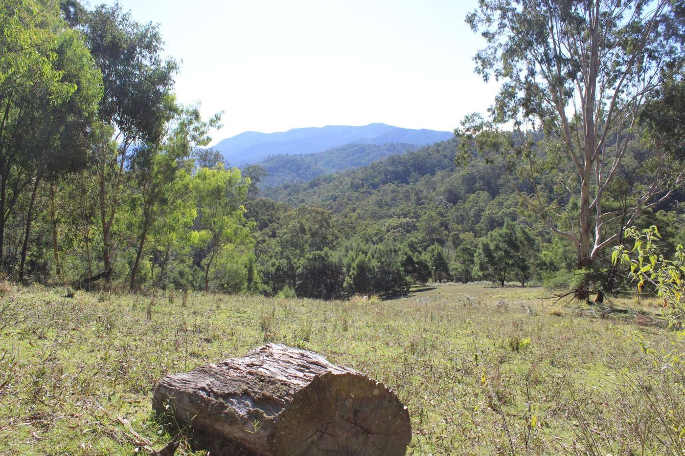 Main view of Homely  listing, Lot 17 Eagles Nest Rd, Brogo, NSW 2550