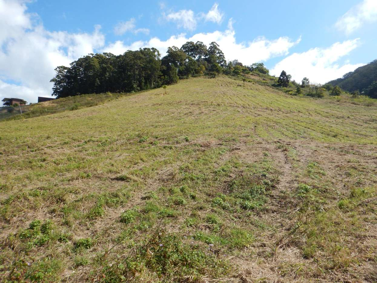 Main view of Homely  listing, Lot 71 Old Coast Road, Korora, NSW 2450