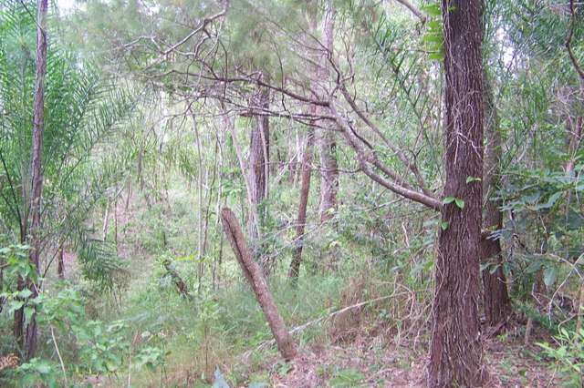 105 Perulpa Drive, Lamb Island QLD 4184