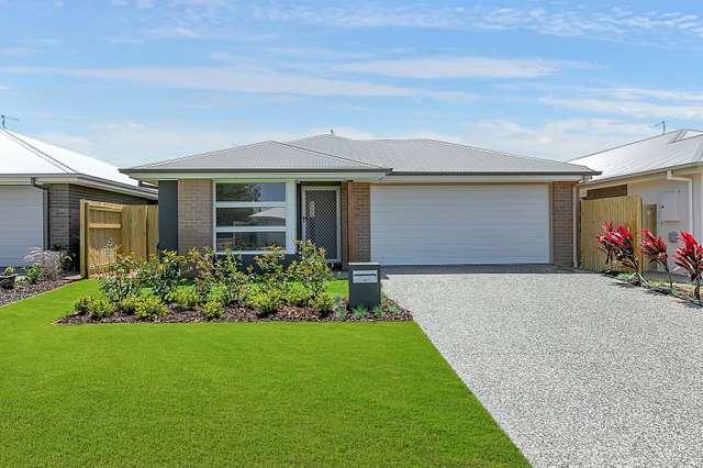 41 Kingsdale Avenue, Thornlands QLD 4164