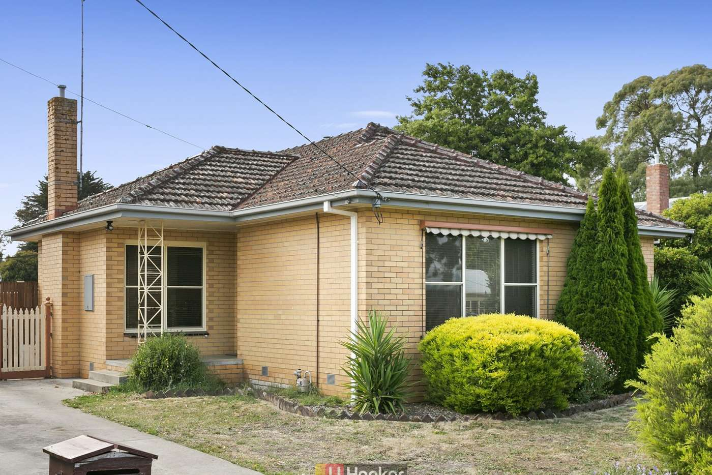 Main view of Homely house listing, 64 Hart Street, Colac VIC 3250