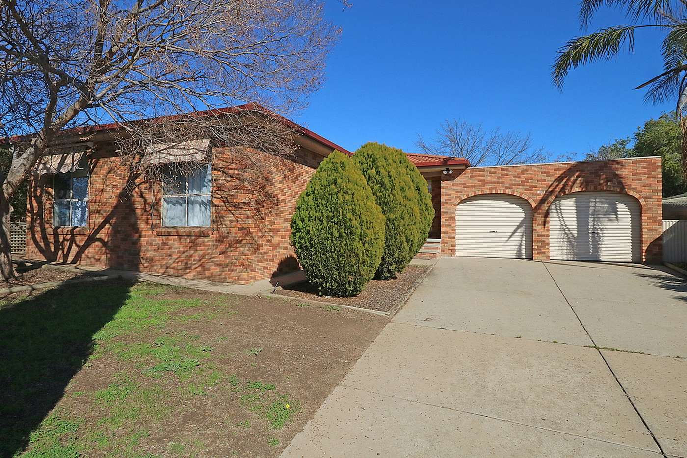 Main view of Homely house listing, 16 Clowes Place, Ashmont NSW 2650